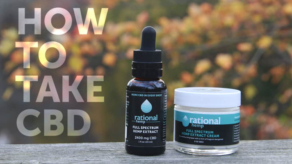 "Blog header reading ""How to take CBD oil"""